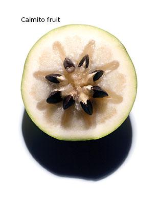 Caimito Fruit